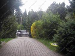 Eladó ház 2081 Piliscsaba Fő út 200m2 45M Ft Ingatlan kép: 14