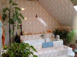 Eladó ház 2000 Szentendre Pomázi út 270m2 57M Ft Ingatlan kép: 8