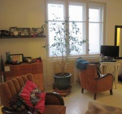 10103-2094-elado-lakas-for-sale-flat-1071-budapest-vii-kerulet-erzsebetvaros-damjanich-utca-vemelet-5th-floor-60m2-838.jpg