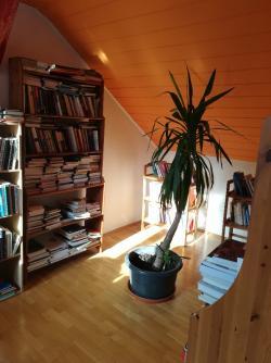10104-2047-elado-lakas-for-sale-flat-1027-budapest-ii-kerulet-frankel-leo-iv-emelet-iv-floor-121m2-136.jpg