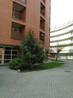 Kiadó lakás 1089 Budapest Orczy tér 32m2 110000 Ft/hó Ingatlan kép: 5