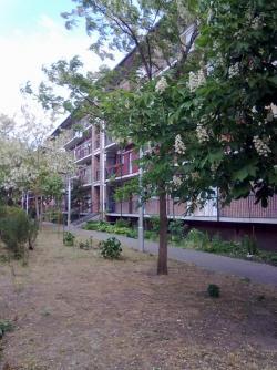 Kiadó lakás 1139 Budapest Rozsnyay utca 35m2 95000 Ft/hó Ingatlan kép: 6