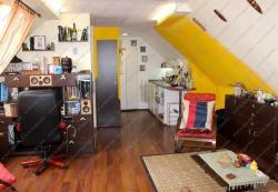 10118-2041-elado-haz-for-sale-house-1047-budapest-iv-kerulet-ujpest-thaly-kalman-utca-240m2-509m2-824.jpg