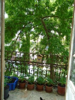 flat For sale 1146 Budapest Thököly út 141sqm 89,9M HUF Property image: 11