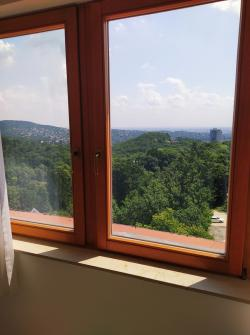 flat For sale 1021 Budapest Budakeszi út 275sqm 299M HUF Property image: 58